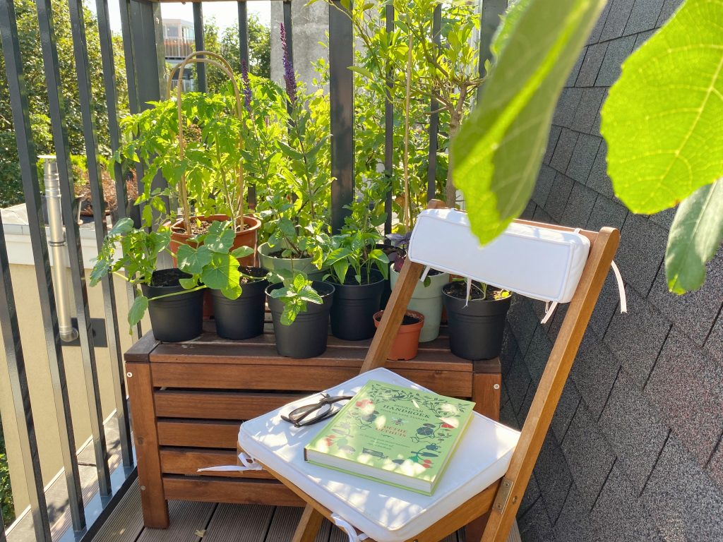 Gardening book on a chair with plants