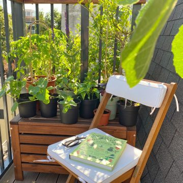 plants on a balcony with a gardening book on a chair