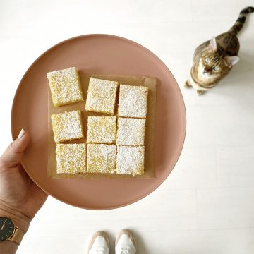 lemon bars on a terracotta plate
